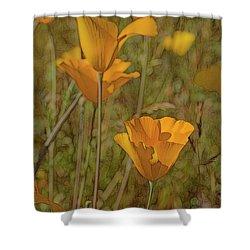 Beauty Surrounds Us Shower Curtain