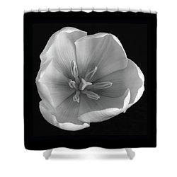 Shower Curtain featuring the photograph Beauty Within by Terence Davis