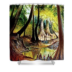 Beaver Dam On Village Creek Shower Curtain
