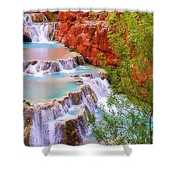 Beaver Falls Grand Canyon Painting Shower Curtain by Dr Bob Johnston