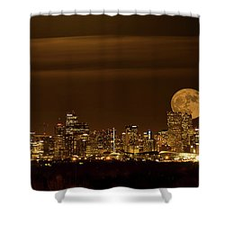 Beaver Moonrise Shower Curtain