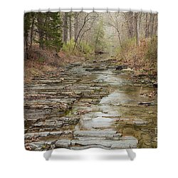 Beavers Bend Creek Winter Morning Shower Curtain