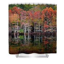 Beaver's Bend Cypress Soldiers Shower Curtain
