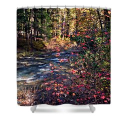 Beavers Bend Shower Curtain