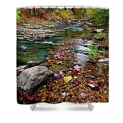 Beaver's Bend Tiny Stream Shower Curtain