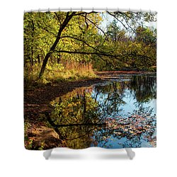 Beaver's Pond Shower Curtain