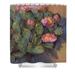 Beavertail Cactus 4 Shower Curtain by Diane McClary