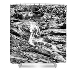 Becky Branch Falls In Black And White Shower Curtain