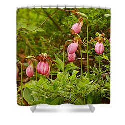 Bed Of Lady's Slippers Shower Curtain
