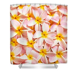 Bed Of Light Shower Curtain by Kyle Rothenborg - Printscapes