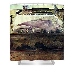 Bedclothes Shower Curtain