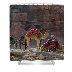 Bedouin Tribesmen, Petra Jordan Shower Curtain