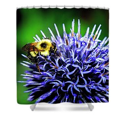Bee And Thistle Shower Curtain