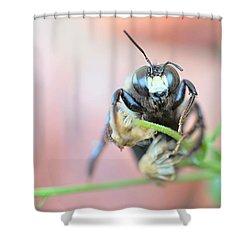 Bee Busy Shower Curtain