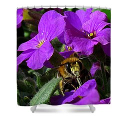 Bee Feeding On Purple Flower Shower Curtain