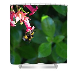 Shower Curtain featuring the photograph Bee Gathering Nectar by Scott Lyons