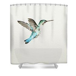 Bee Hummingbird Shower Curtain