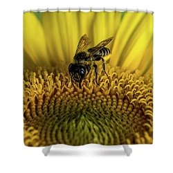 Shower Curtain featuring the photograph Bee In A Sunflower by Paul Freidlund