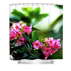 Shower Curtain featuring the photograph Bee In Flight by Micah May