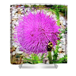 Bee Likes Purple Shower Curtain by Robert Clayton