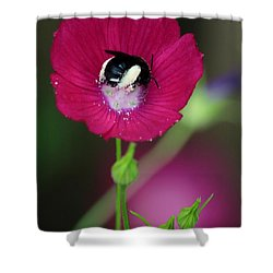 Bee My Guest Shower Curtain