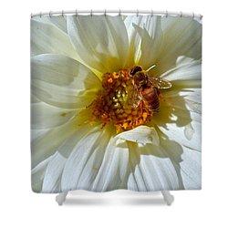 Bee Nice Dahlia  Shower Curtain