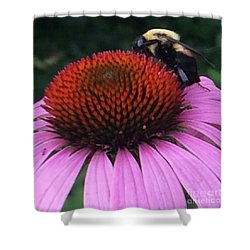 Shower Curtain featuring the photograph Bee On Flower By Saribelle Rodriguez by Saribelle Rodriguez
