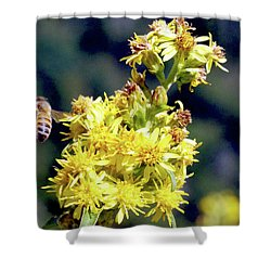Bee On Goldenrod Shower Curtain