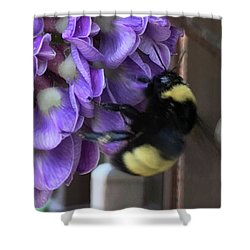 Bee On Native Wisteria I Shower Curtain