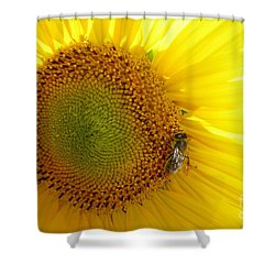 Shower Curtain featuring the photograph Bee On Sunflower by Jean Bernard Roussilhe