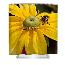 Shower Curtain featuring the photograph Bee On Yellow Cosmo by Peter J Sucy