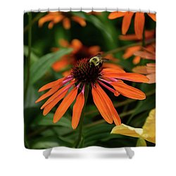 Bee Pollinating On A Cone Flower Shower Curtain