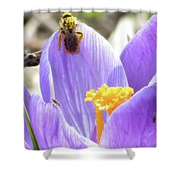 Bee Pollen Shower Curtain