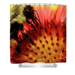 Shower Curtain featuring the photograph Bee Red Flower by Meta Gatschenberger