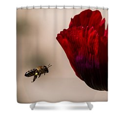 Bee Right Profile Flying To Red Flower Shower Curtain