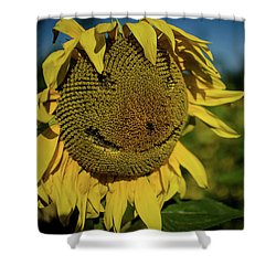 Bee Smiling Sunflowers Shower Curtain