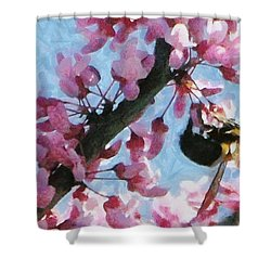 Bee To The Blossom Shower Curtain by Jeff Kolker