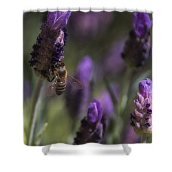 Bee's Delight Shower Curtain