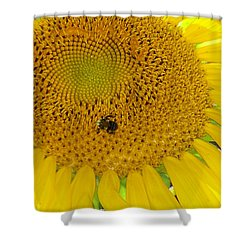 Shower Curtain featuring the photograph Bees Share A Sunflower by Sandi OReilly