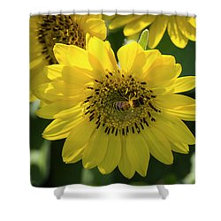 Bee's Work Is Never Done Shower Curtain