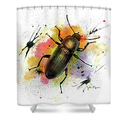 Beetle Illustration Shower Curtain
