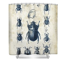 Beetles - 1897 - 02 Shower Curtain by Aged Pixel