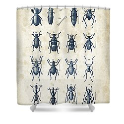 Beetles - 1897 - 03 Shower Curtain by Aged Pixel