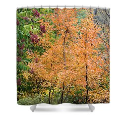 Before The Fall Shower Curtain by Deborah  Crew-Johnson
