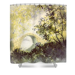 Beggar's Bridge Vignette Shower Curtain