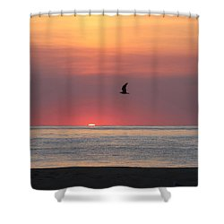Shower Curtain featuring the photograph Beginning The Day by Robert Banach