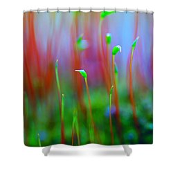 Beginnings Shower Curtain by Michelle Joseph-Long