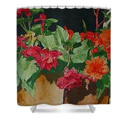 Begonias Flowers Colorful Original Painting Shower Curtain by Elizabeth Sawyer