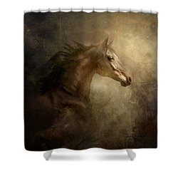 Shower Curtain featuring the photograph Behind Broken Mirror by Dorota Kudyba