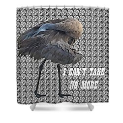 Behind The Feathers Shower Curtain